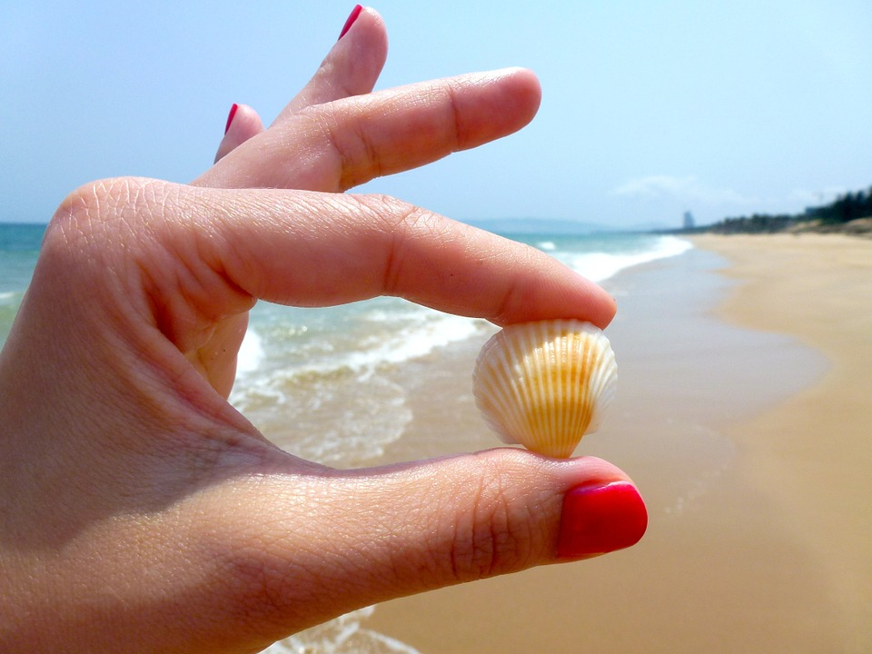 beach-544621_960_720